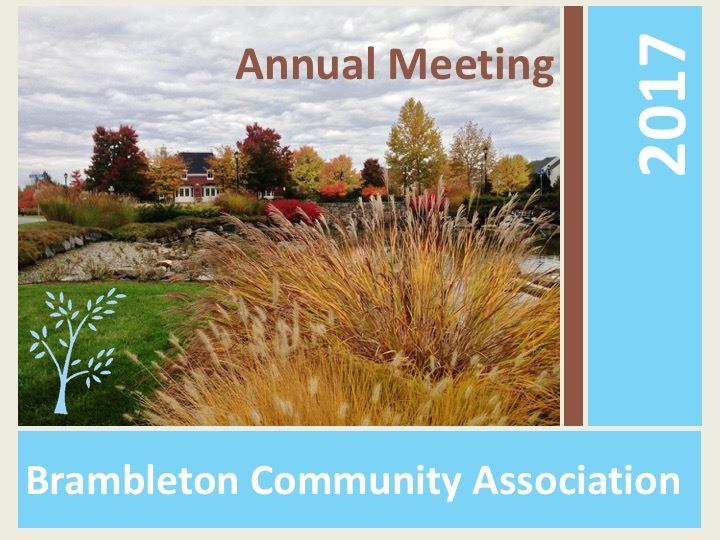 Annual Meeting PowerPoint 2017  - First Slide BCA FInal